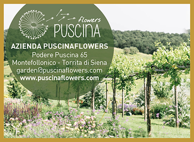 PUSCINA FLOWERS_web_2021