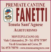 fanetti_sito